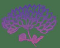 sumi-e Tuschzeichnung mit Chrysantheme