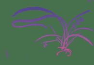 sumi-e Tuschzeichnung mit wilder Orchidee