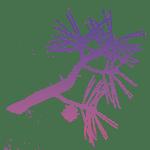 sumi-e Tuschzeichnung mit Kiefernzweig