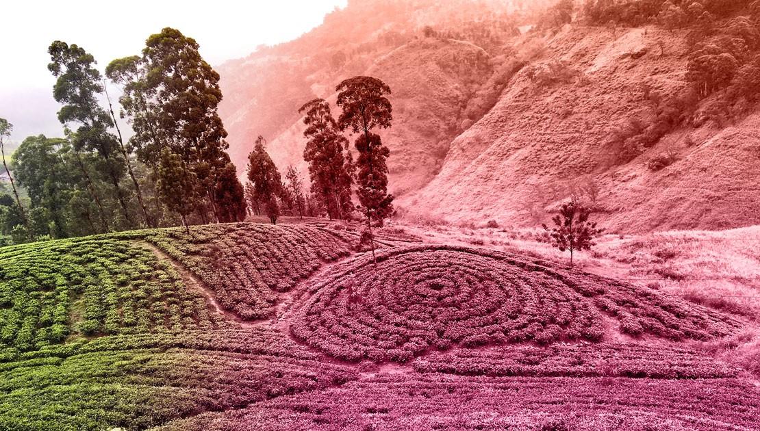 Landschaft Taoistische Landreinigung